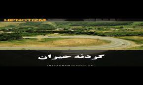 فیلم ؛ زیباترین جاده های ایران را بشناسید