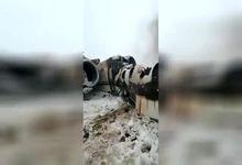 عکس و فیلم سقوط هواپیمای ارتباطی آمریکا در منطقه طالبان در افغانستان